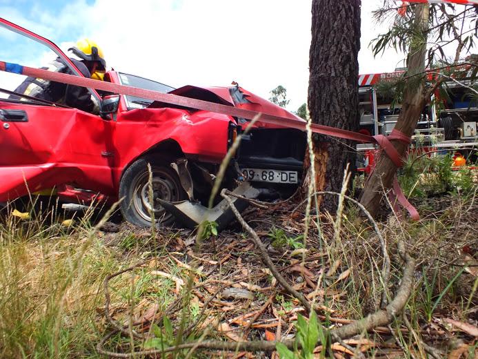Despiste de carrinha contra pinheiro  provoca dois feridos, um dos quais grave