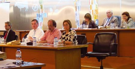 Deputados aplaudem descida do IMI