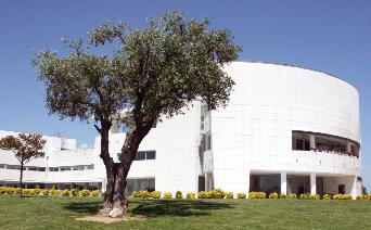 Oliveira do Bairro: Câmara abre candidaturas para bolsas de estudo ao ensino superior