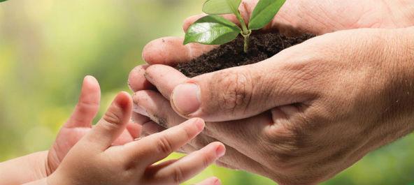 Agricultura biológica é tema de seminário em Anadia