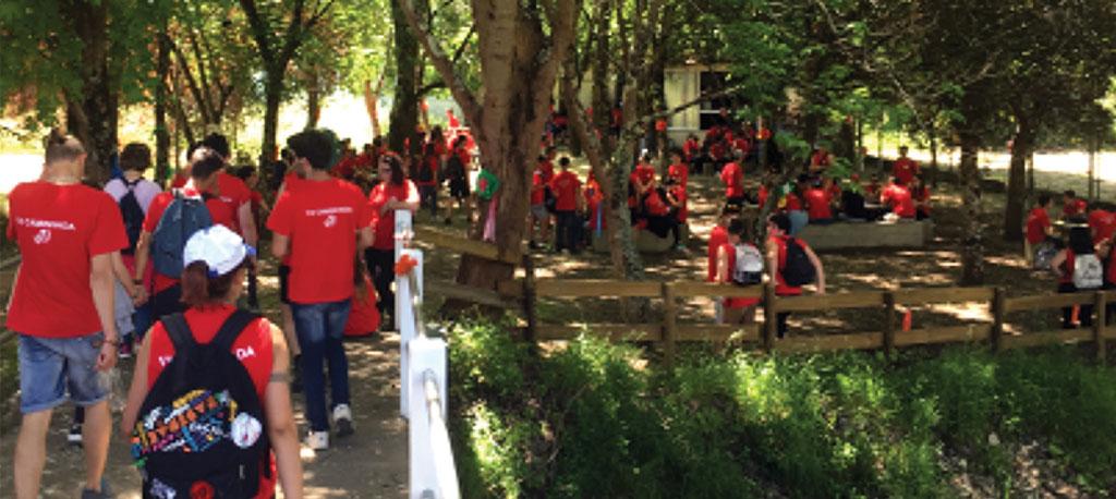 Escola Profissional de Anadia: 6.ª caminhada ecológica mobiliza alunos, docentes, funcionários e diretores