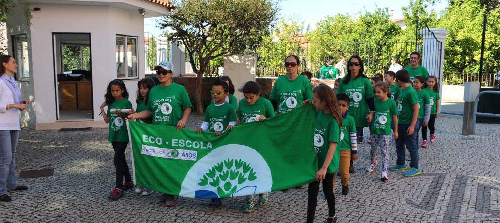 Anadia: Escolas do concelho distinguidas com bandeira Verde Eco-Escolas