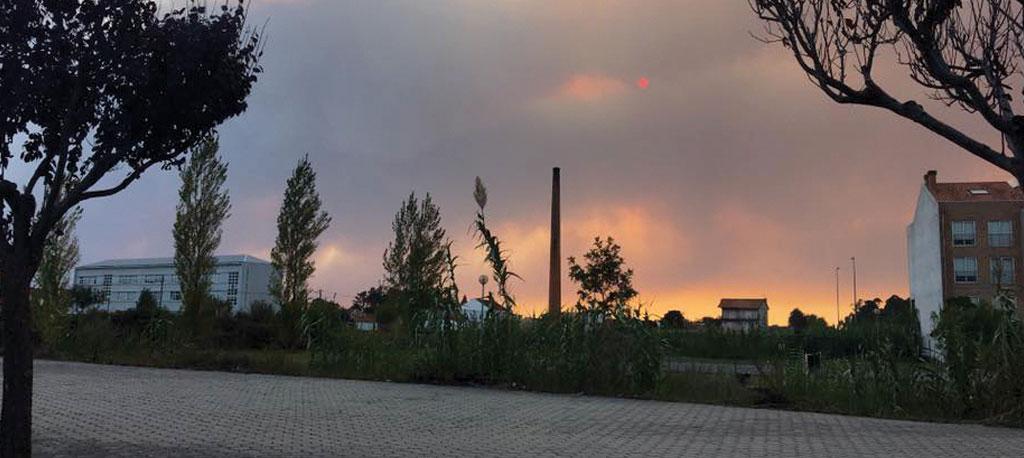 Vagos: Deputados municipais no rescaldo dos fogos