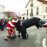Carnaval de Fermentelos: Alegria, animação e muita música