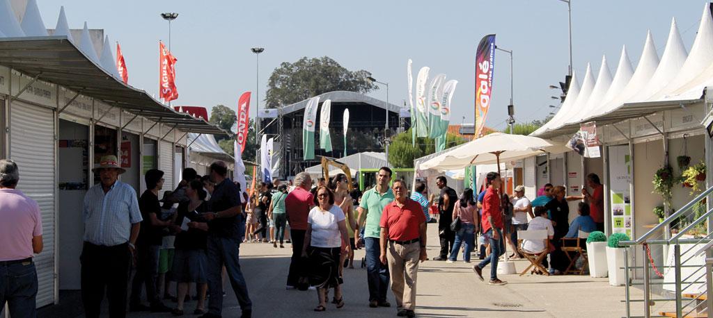 Mealhada: FESTAME já selecionou os expositores para este ano