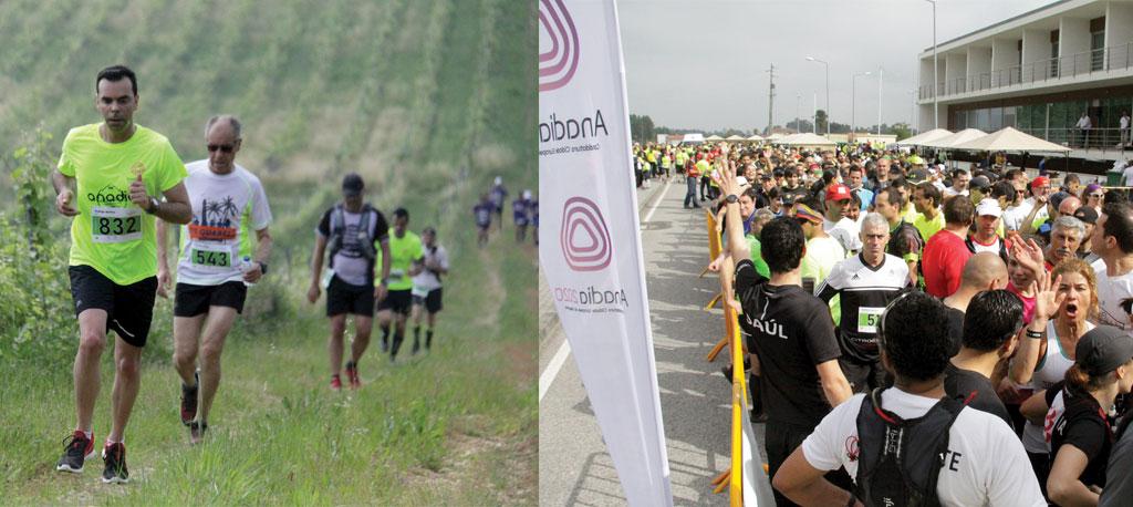 Anadia Wine Run: Atletismo em festa pelas vinhas do concelho