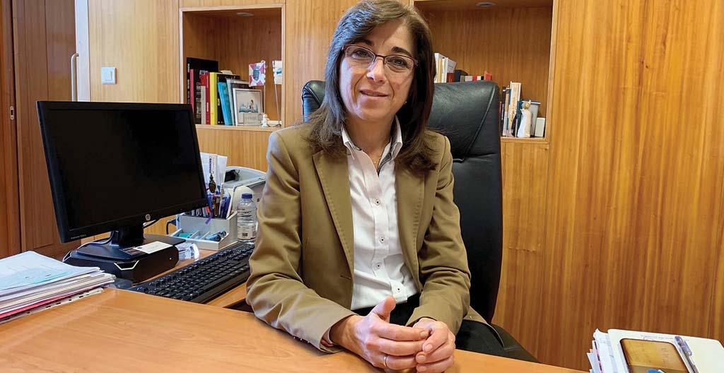 Anadia: Ação Social e Emprendedorismo destacam-se no arranque do mandato