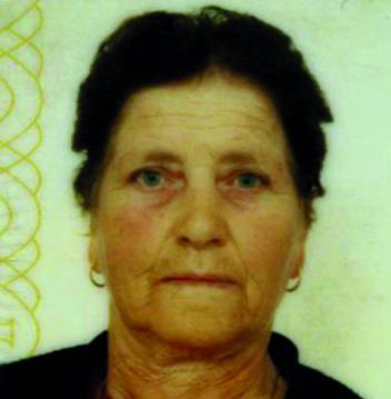 Maria Irene Marques dos Santos