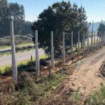 Oiã com barreiras acústicas na autoestrada para minimizar ruído
