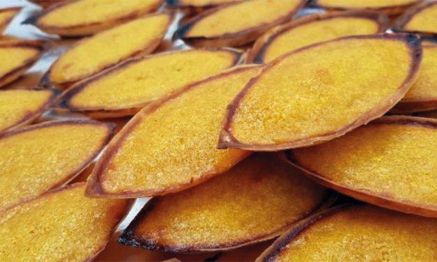Bateiras do Cértima são o novo pastel de Oliveira do Bairro