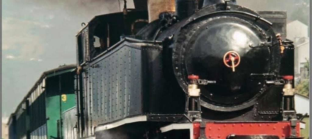 Descarrilou o projeto do comboio a vapor na linha do Vouga