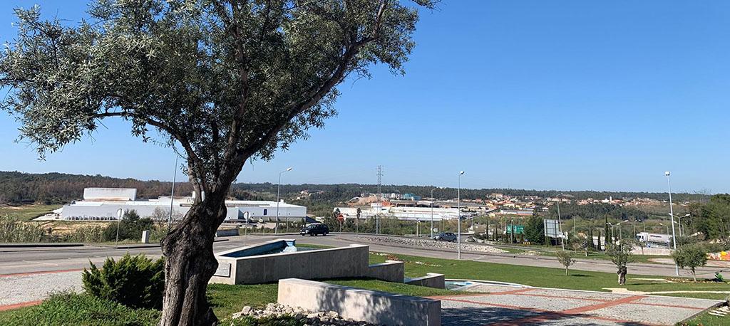 Oliveira do Bairro é cidade há 16 anos