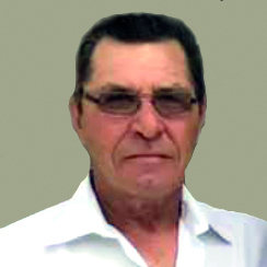 Manuel Ferreira Domingues
