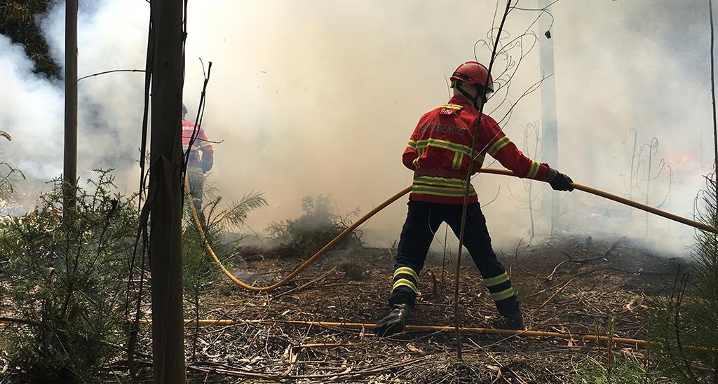 Incêndios: Norte de Águeda e Albergaria-a-Velha com fogos ativos
