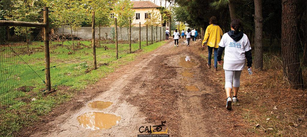 Anadia: Caminhada do Rotary Club rende 2050 euros para os bombeiros