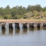 Vagos: Ponte da Fareja vai ser objeto de requalificação