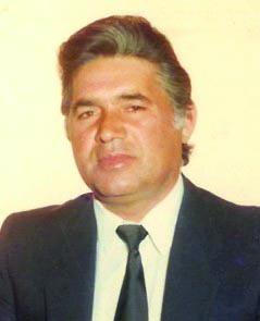 Alcides Ferreira Briosa