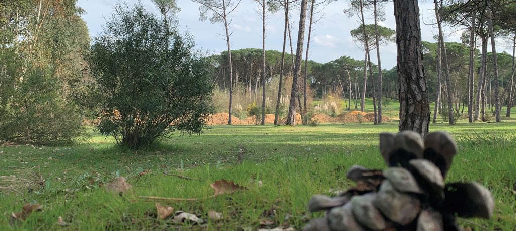 Câmara de Oliveira do Bairro avança com 400 mil euros para futuro Parque da Cidade