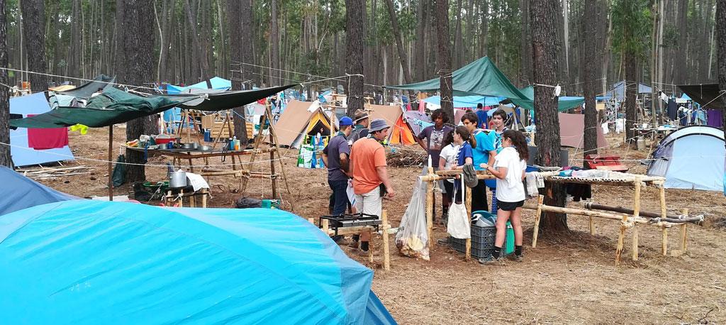 Escuteiros regressam a Avelãs de Cima para plantar mil pinheiros