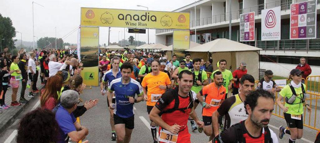 Anadia Wine Run está de regresso em março