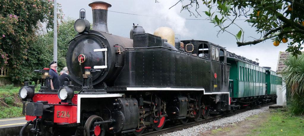 Comboio a vapor regressa à Linha do Vouga no Carnaval