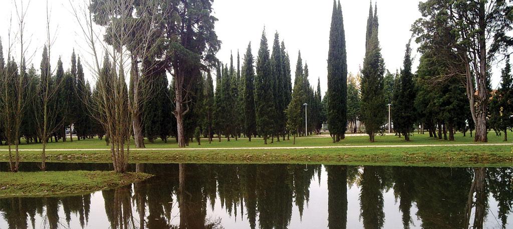 BioFestival recebe Primavera no Parque da Cidade da Mealhada
