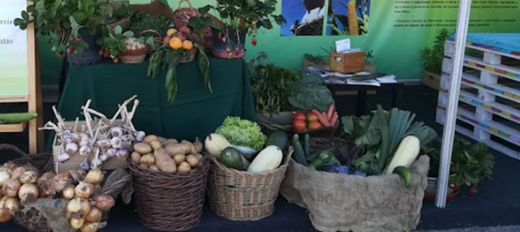 """Cantanhede: campanha """"Da Terra à Mesa"""" apoia agricultores"""