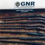 Homem detido com 20 armas ilegais em Águeda