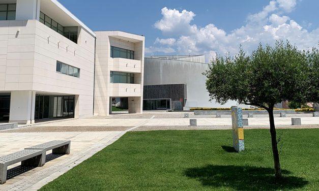 Município de Oliveira do Bairro apoia famílias e comércio local com 150 mil euros