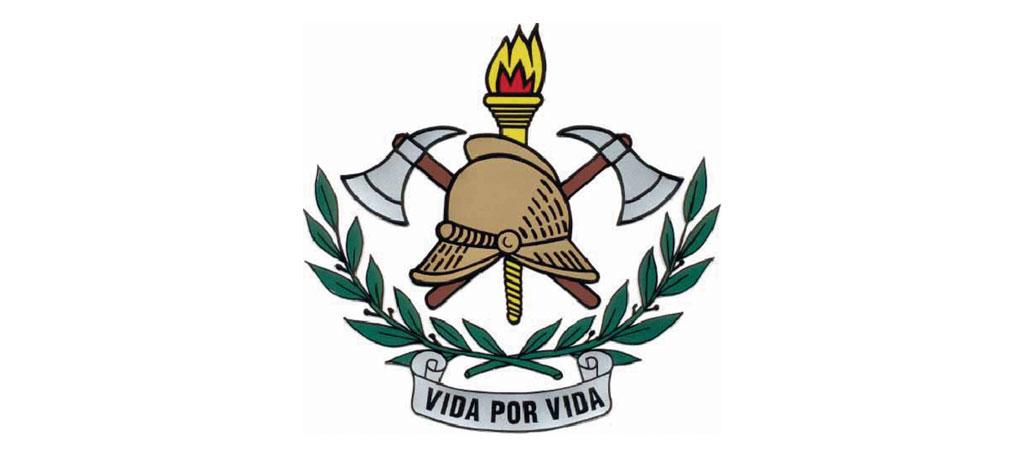 BOMBEIROS  DE ANADIA: Associação vai alienar viaturas