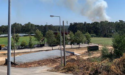 Oiã: Incêndio junto ao Campo de Futebol de Oiã