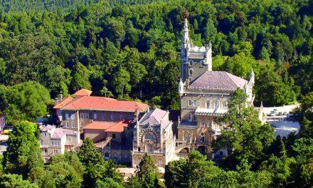 Governo anuncia investimentos de meio milhão de euros para a Mata do Buçaco