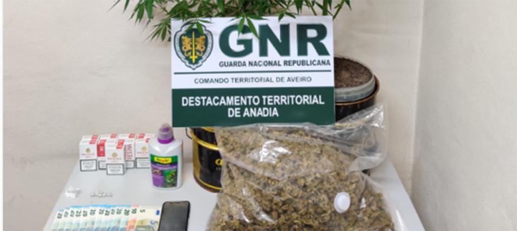 Oliveira do Bairro: Detido por tráfico de estupefacientes