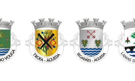 Águeda: Limite de freguesias do norte do concelho em discussão pública