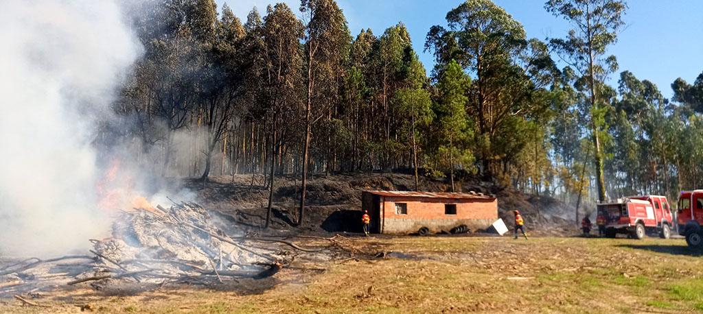 Vilarinho do Bairro: Incêndio rural consome dois hectares de eucaliptal e mato