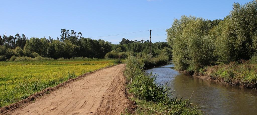 O. Bairro: Avança implementação de percursos pedestres e cicláveis junto aos rios Cértima e Levira