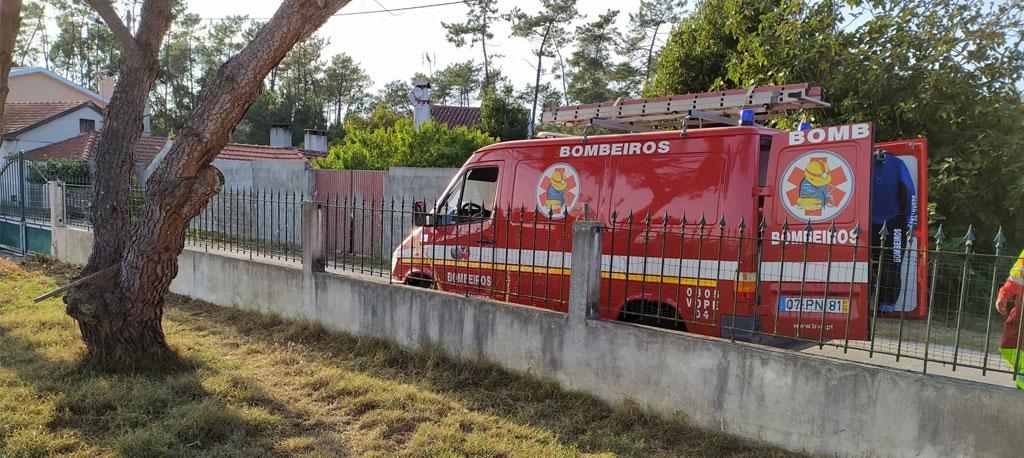 Cantanhede: Bombeiros resgatam pastor alemão de um túnel em Cadima