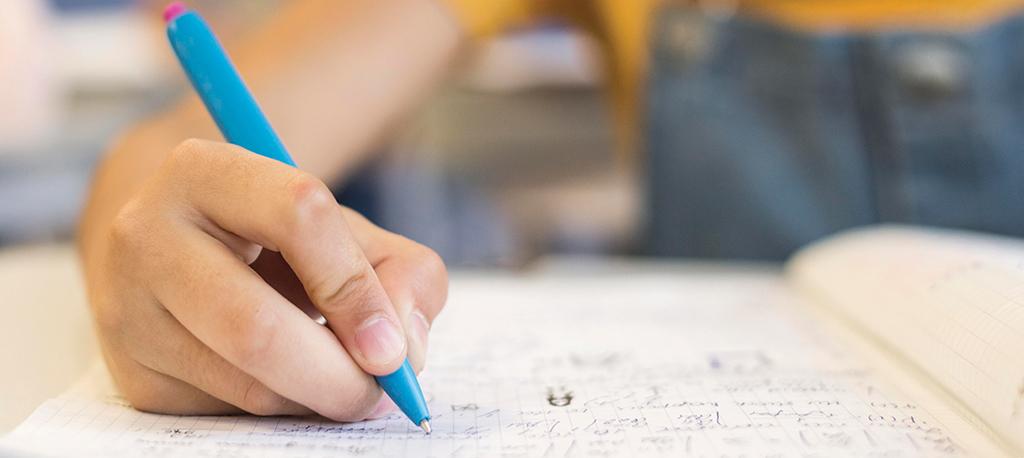 Anadia: Município oferece cadernos de atividades a alunos do 1.º CEB