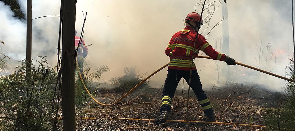 Incêndios: Fogo de Oliveira de Frades já alastrou a Águeda e Sever do Vouga