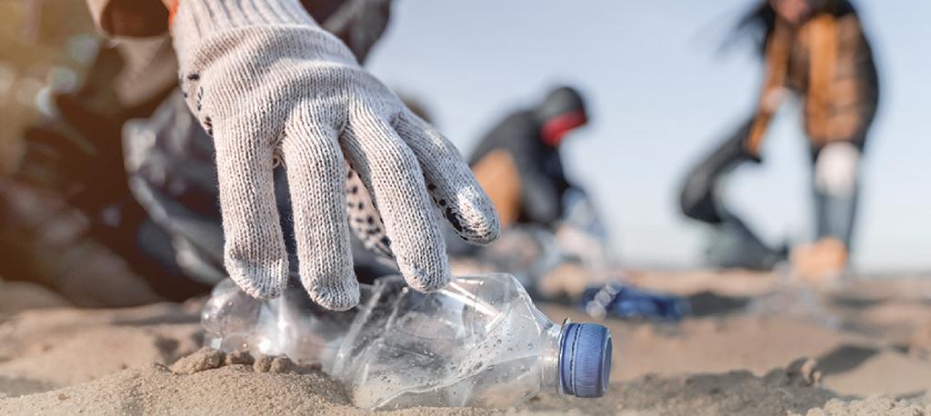 Aveiro: Jovens voluntários vão limpar Praia de S. Jacinto