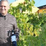 Quinta das Bágeiras: Vinhos que perpetuam histórias e vivências