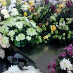 Anadia: Mercado das Flores aberto a 30 de outubro
